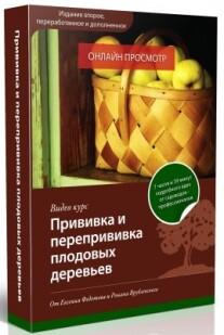 Постер: Прививка и перепрививка плодовых деревьев