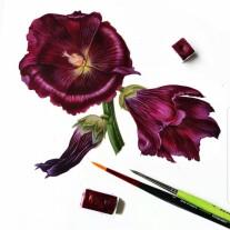Постер: Атласные темные цветы