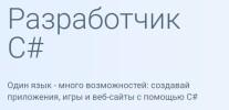 Постер: Разработчик C#: Microsoft Developer