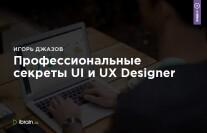 Постер: Профессиональные секреты UI и UX Designer