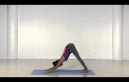 Простые упражнения для мышц спины