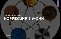 Постер: Коррекция 5 У-СИН