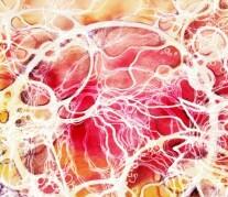 Постер: Нейрографика отношений