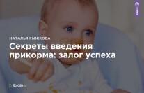Постер: Секреты введения прикорма: залог успеха