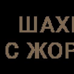 Школа «Шахматы с Жориком»
