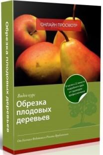 Постер: Обрезка плодовых деревьев